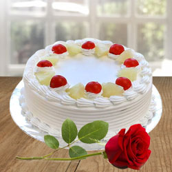 Luxurious Vanilla Cake and a Fresh Red Rose