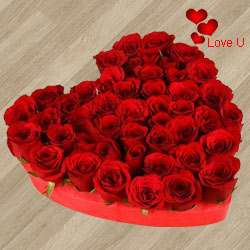 101 Exclusive <font color =#FF0000> Dutch Red </font>   Roses  in  Heart Shaped Arrangement