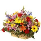 Sweetest Moments in Love Mix Arrangement of Fresh Flowers
