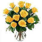 Stimulating Twelve Yellow Roses in a Vase with Dreams Of Joy to Akkur