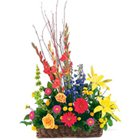 Magnificent Love Special Seasonal Flowers Arrangement in Mixed Colors to Hmt Bangalore