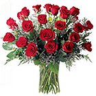 Magical Touch Big Bouquet of 40 Red and White Roses