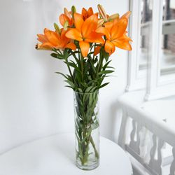 Delightful Vase Decked with 6 Pcs. Lilies in Mixed Colors to Chunchanakuppe