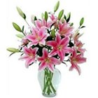 Tender Pink Colored Lilies with Free Vase to Park Road