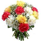 Astounding Bunch of Mixed Carnations