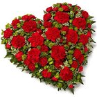 Scintillating 24 Red Carnations in Heart Shape to WhiteField