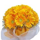 Delightful Yellow Coloured Gerberas Collection