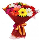 Sophisticated Presentation of Mixed Gerberas