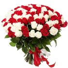 Heavenly Dazzle Red  N  White Roses Collection
