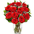 Treasured Display of Blooming Red Rose in a Glass Vase