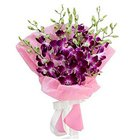 True Romantic Eight Orchid Stems Bunch