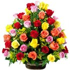 Sweetest Mixed Roses Collection
