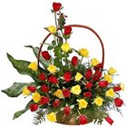 Soft Arrangement of Red N Yellow Coloured Roses