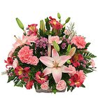 Designed Assortment Flowers