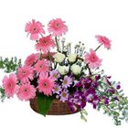 Attractive Carnival of Mixed Flowers Premium Arrangement