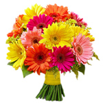 Beautiful Bouquet of Colourful Gerberas