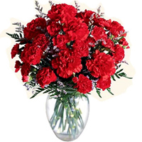 Now deliver these petite Red Carnations in a special glass vase