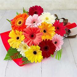 Fantastic Hand Bunch of Yellow Gerberas