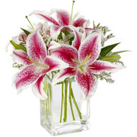 Fabulous Arrangement of Pink Lilies in a Glass Vase