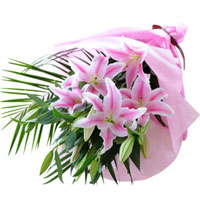 Bright Hand Bunch of Pink Lilies