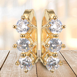Tuneful Shine Earrings