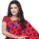 Adorned Attraction Mix Material Saree