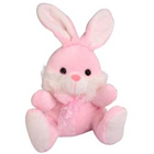 Cute Rabbit Soft Toy to Aranya Bhavan