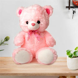 Big Teddy Bear to Kothanur PO