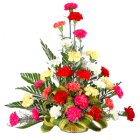 Delightful 30 Mixed Carnations in a Brilliant Arrangement