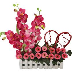 Cheerful Orchids and Matching Flowers with a Red Heart