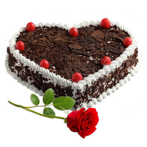 Deliver Combo of Heart Shape Black Forest Cake with Single Rose