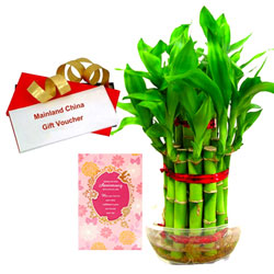 Send online Anniversary Card, Bamboo Plant with Mainland China Gift Voucher