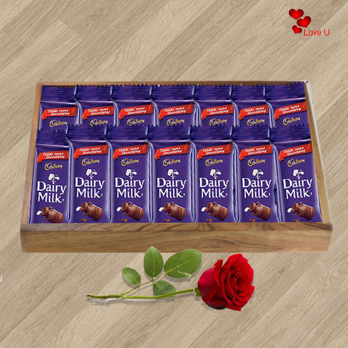 Dairy Milk Chocolates N Red Rose Gift for Rose Day