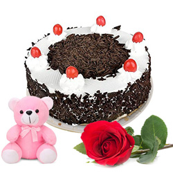 Shop Black Forest Cake with Red Rose N Teddy Online