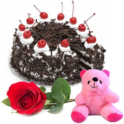 Order Black Forest Cake with Teddy N Red Rose