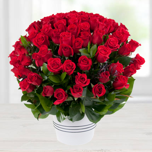 Luxurious Valley of 100 Dutch Red Roses Bouquet