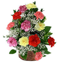 Delightful Basket Full of 15 Mixed Carnations