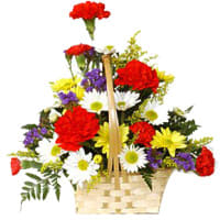 Enchanted Arrangement of Mixed Carnations and Gerberas