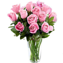 Expressive Collection of Roses in a Vase