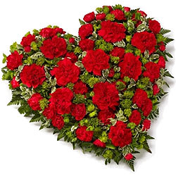 Scintillating 24 Red Carnations in Heart Shape