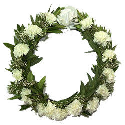 Graceful Wreath of Carnations
