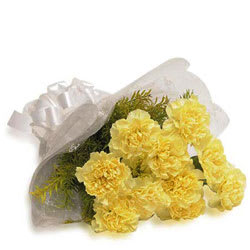 Breathtaking Selection of Yellow Carnations