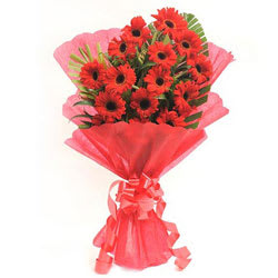 Luminous Pure Passion Bouquet of Gerberas