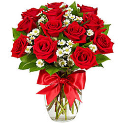 Tender Elegance Dutch Red Roses Bouquet