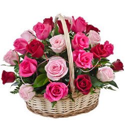 Dazzling Falling in Love Fifteen Pink N Red Roses Basket