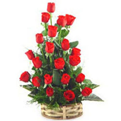 Exotic Red Roses Collection