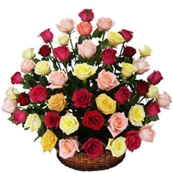 Silky-Smooth Mix Coloured Roses Collection in Basket