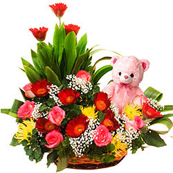 Passionate Basket of Gerbera N Roses with a Teddy