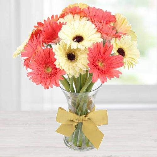 Aromatic Affection Gerbera Assemblage
