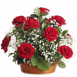 Gift Arrangement of Red Roses Online